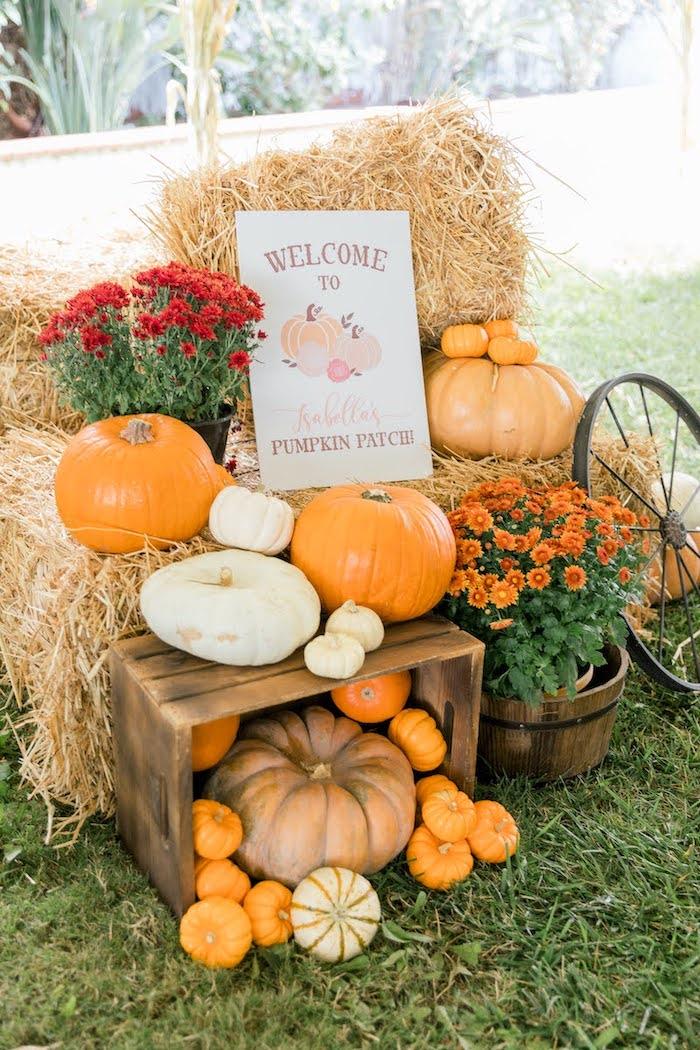 Pumpkin + Straw Bale Welcome from a Little Pumpkin Birthday Party on Kara's Party Ideas | KarasPartyIdeas.com (18)