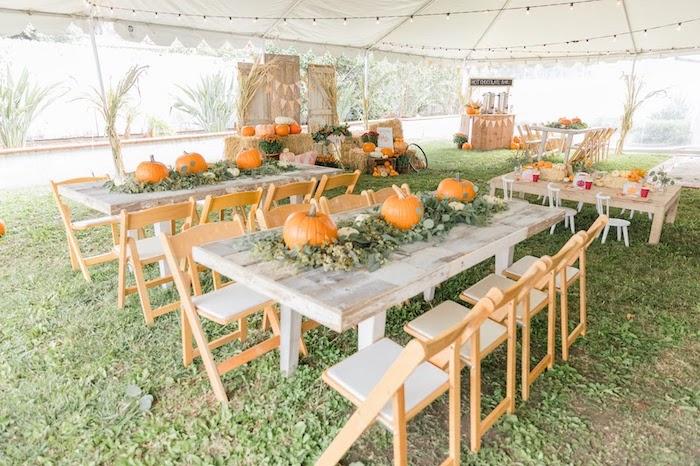 Pumpkin-inspired Guest Tables from a Little Pumpkin Birthday Party on Kara's Party Ideas | KarasPartyIdeas.com (9)