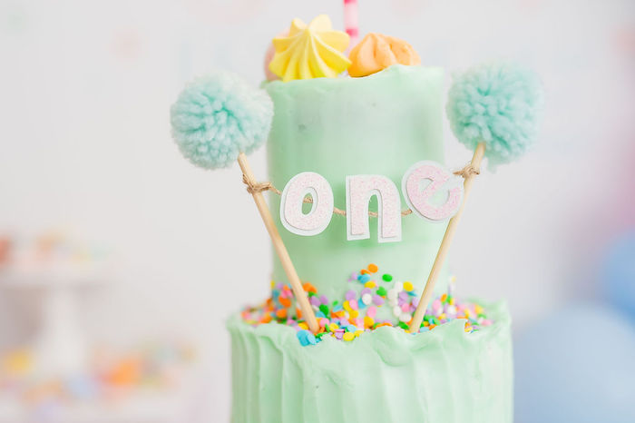 Pom One Banner from a Stuffed Animal Picnic Party on Kara's Party Ideas | KarasPartyIdeas.com (7)