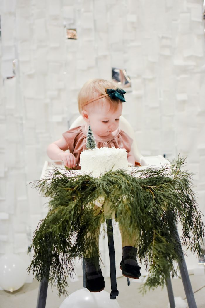 Winter Cake Smash from a Winter ONEderland 1st Birthday Party on Kara's Party Ideas | KarasPartyIdeas.com (15)