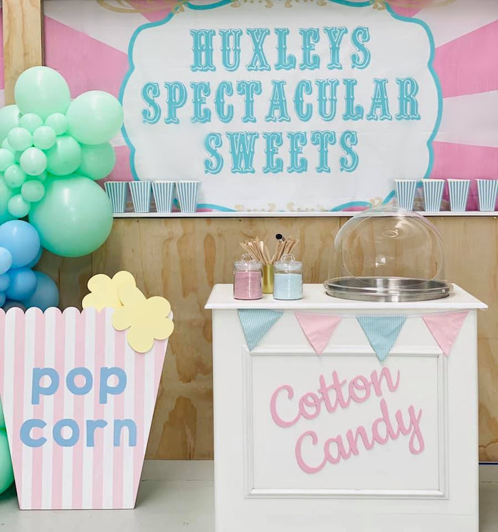 Pastel Circus Party on Kara's Party Ideas | KarasPartyIdeas.com (8)
