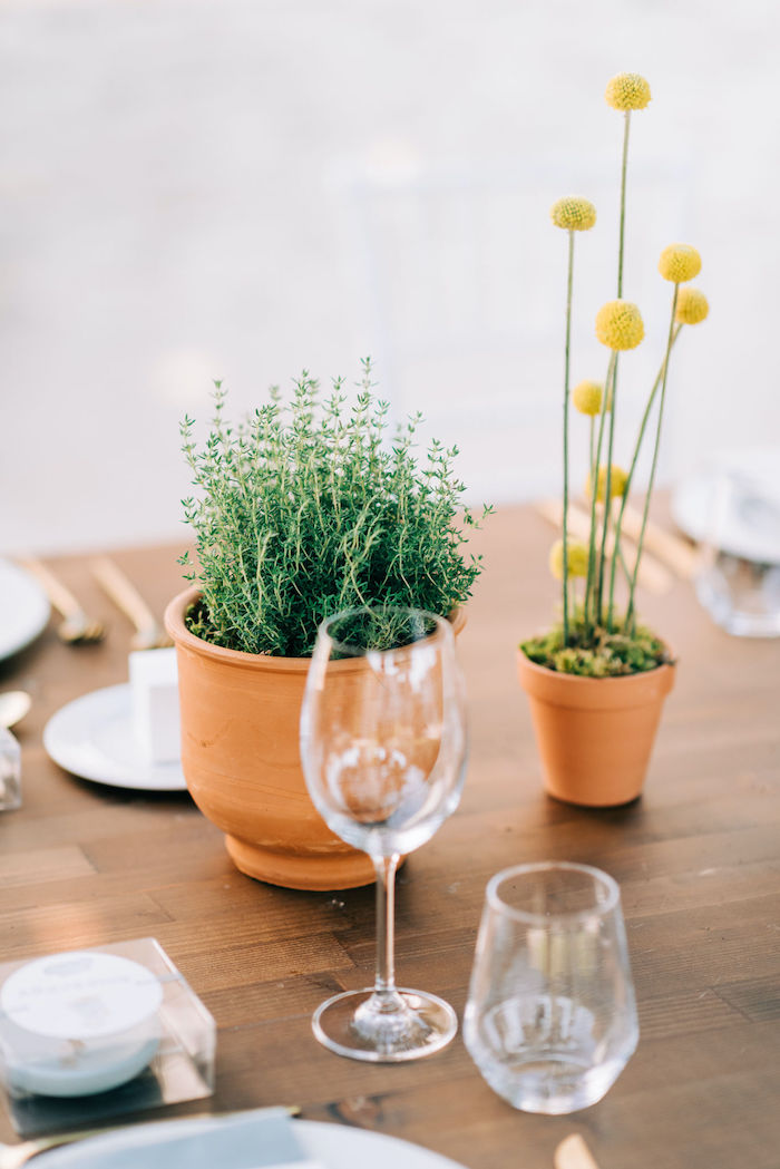 Plants + Table Centerpieces from a Hermes Greek God Inspired Christening Party on Kara's Party Ideas | KarasPartyIdeas.com (24)