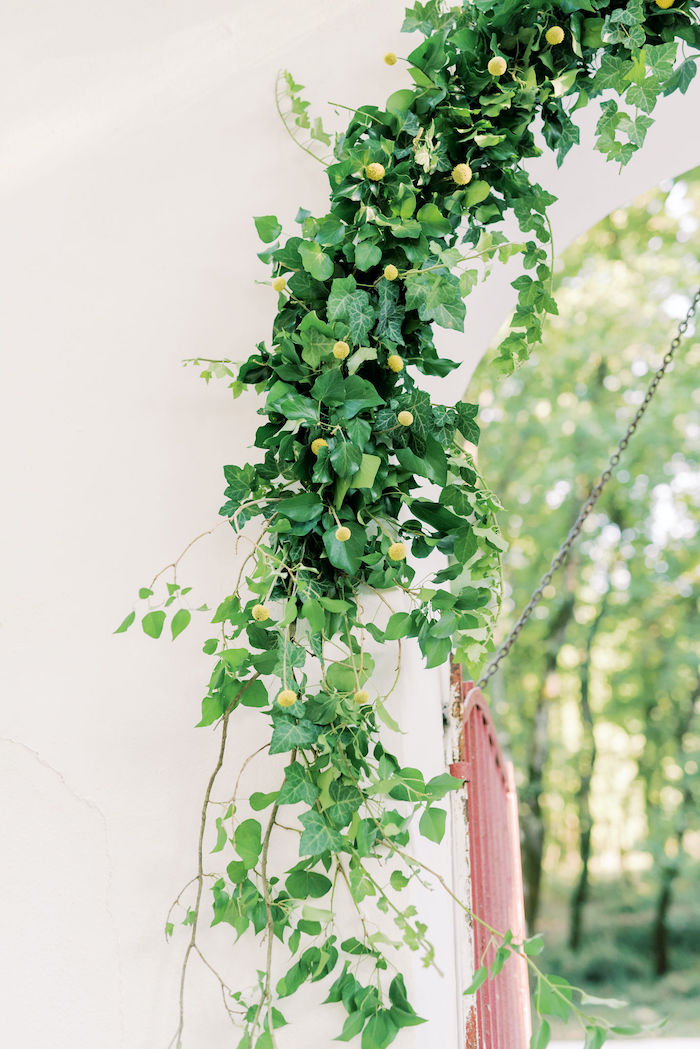 Vine Greenery from a Hermes Greek God Inspired Christening Party on Kara's Party Ideas | KarasPartyIdeas.com (3)