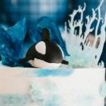 Monochromatic Orca Whale Birthday Party on Kara's Party Ideas | KarasPartyIdeas.com (1)
