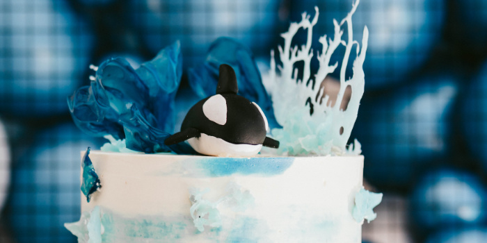 Monochromatic Orca Whale Birthday Party on Kara's Party Ideas | KarasPartyIdeas.com (1)