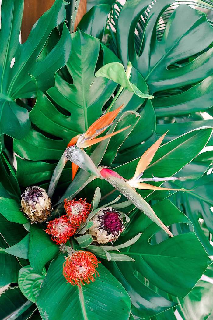 Tropical Blooms from a Tropical Baptism Party in Rhodes on Kara's Party Ideas | KarasPartyIdeas.com (34)