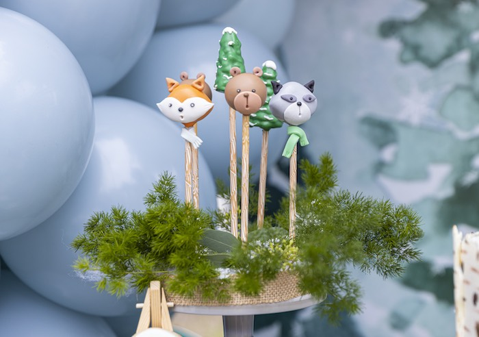Woodland Cake Pops from a Winter ONEderland Birthday Party on Kara's Party Ideas | KarasPartyIdeas.com (25)