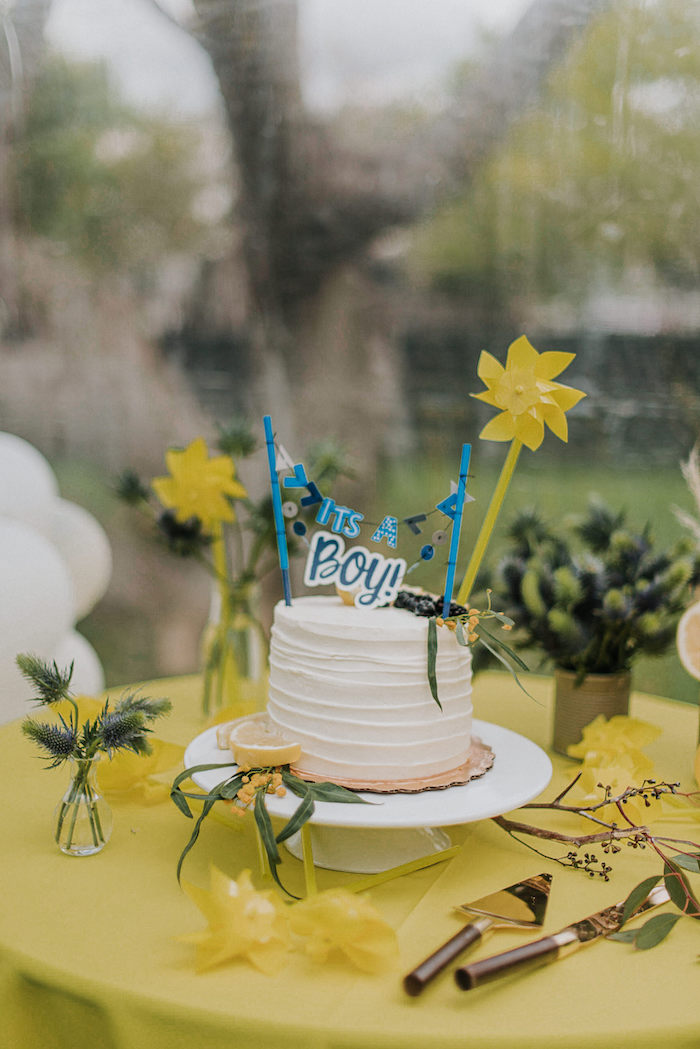 Cake from a Backyard Blue and Navy Baby Shower Brunch on Kara's Party Ideas | (10)