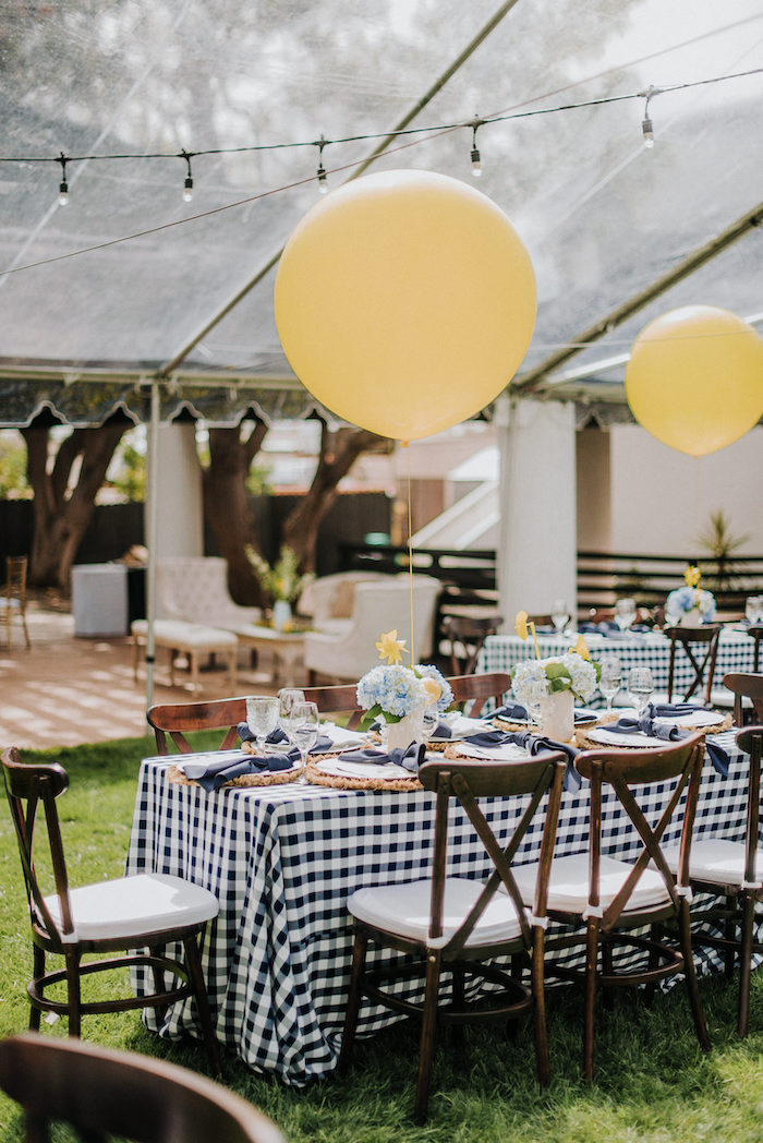 Backyard Blue and Navy Baby Shower Brunch on Kara's Party Ideas | (22)