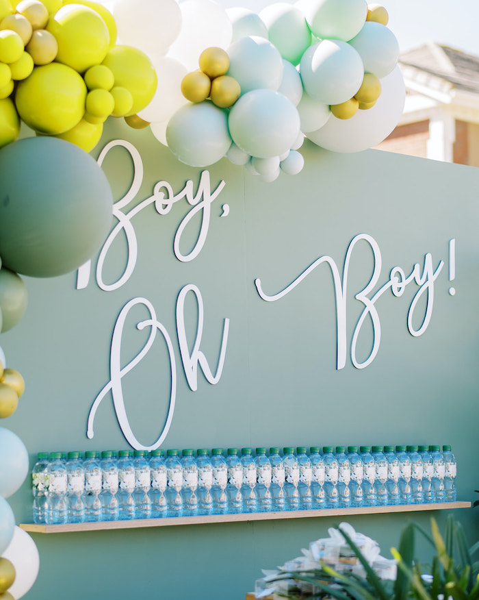 Boy Oh Boy Backdrop from a Modern Safari Drive-By Baby Shower on Kara's Party Ideas | KarasPartyIdeas.com (12)