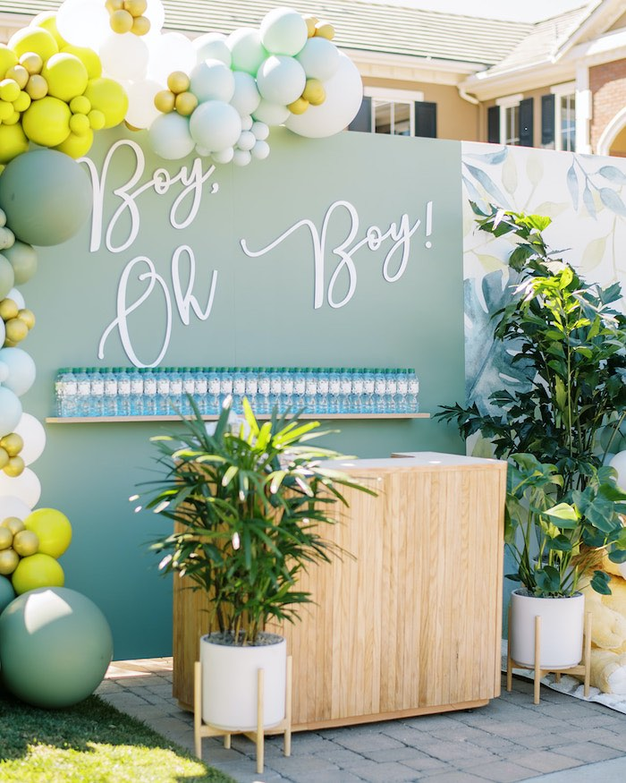 Boy Oh Boy Backdrop from a Modern Safari Drive-By Baby Shower on Kara's Party Ideas | KarasPartyIdeas.com (9)