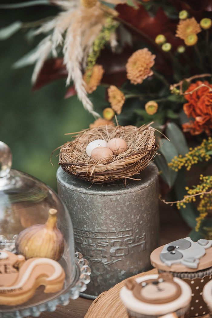 Nest Decoration from a Woodland Forest Christening Party on Kara's Party Ideas | KarasPartyIdeas.com (10)