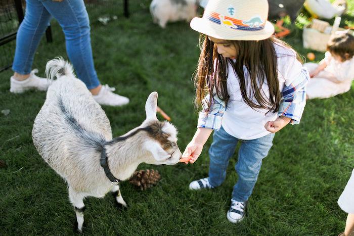 Boho Bunny Petting Zoo Party on Kara's Party Ideas   KarasPartyIdeas.com (8)