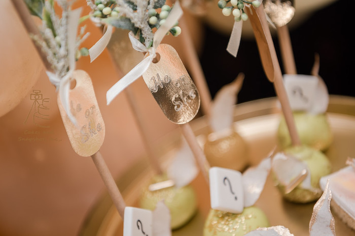 He or She Cake Pop Tags from a Neutral Earth Tones Gender Reveal Party on Kara's Party Ideas | KarasPartyIdeas.com (23)