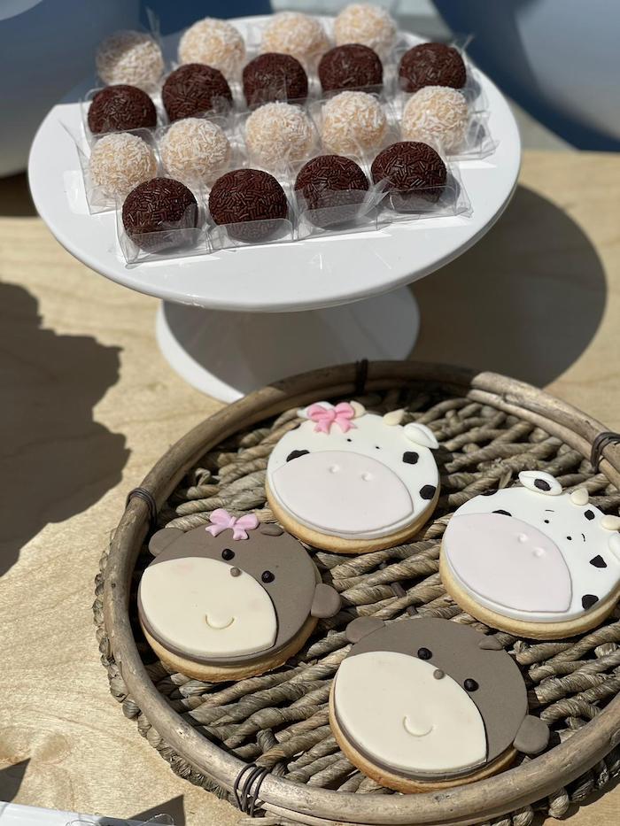Animal Cookies from a Muted Boho Noah's Ark Party on Kara's Party Ideas | KarasPartyIdeas.com
