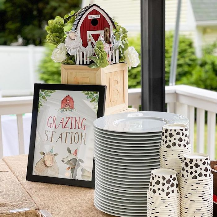 Grazing Station from a Farm 1st Birthday Party on Kara's Party Ideas | KarasPartyIdeas.com