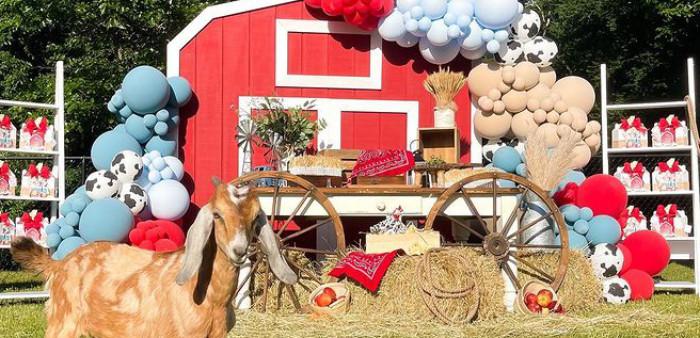Farm 1st Birthday Party on Kara's Party Ideas   KarasPartyIdeas.com