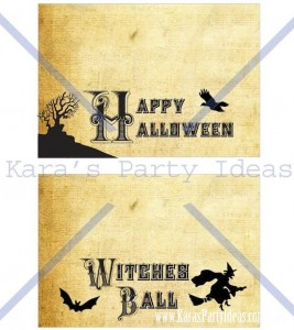 Witches Ball Halloween Party via Kara's Party Ideas Ideas -www.KarasPartyIdeas.com-shop-25