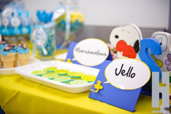 kara 39 s party ideas snoopy dog cartoon charlie brown boy birthday party