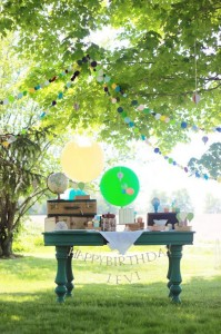 table_533x800
